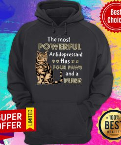 Nice Cat The Most Powerful Antidepressant Has Four Paws And A Purr Hoodie